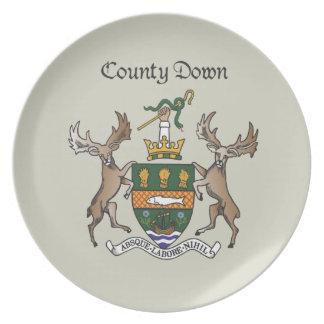 El condado abajo platea plato para fiesta
