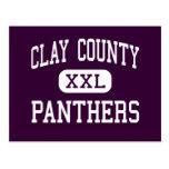 El condado de Clay - panteras - alto - Ashland Ala Tarjeta Postal