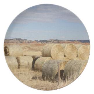 El condado de Crook, balas de heno 2 Platos Para Fiestas