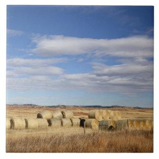 El condado de Crook, balas de heno Azulejo Cuadrado Grande
