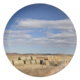 El condado de Crook, balas de heno Plato De Comida