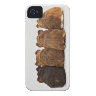 El conejillo de Indias empalma la caja Iphone4 Case-Mate iPhone 4 Protectores