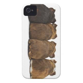 El conejillo de Indias empalma la caja Iphone4 iPhone 4 Protector