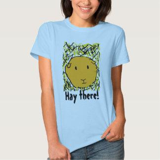 ¡el conejillo de Indias en heno, hace heno allí! Camisas
