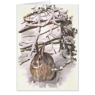 El conejito de la nieve sazona saludos tarjeta de felicitación