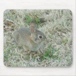 El conejito del bebé da vuelta a las cabezas tapete de ratón