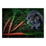 El conejito masca las zanahorias/Notecard Felicitaciones