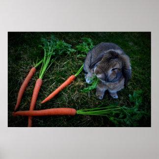 El conejito masca zanahorias/la impresión del póster