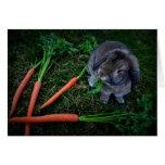 El conejito masca zanahorias/la tarjeta de cumplea