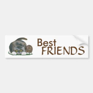 El conejito y el gatito son mejores amigos pegatina para auto