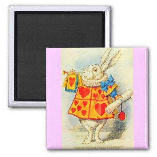 El conejo blanco a todo color imán cuadrado