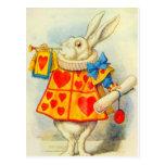 El conejo blanco a todo color postal