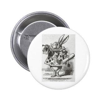 El conejo blanco de Alicia en el país de las marav Pins