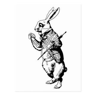 El conejo blanco entintado postal