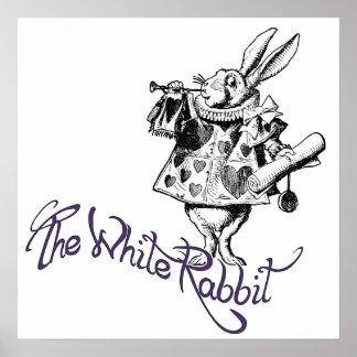 El conejo blanco poster