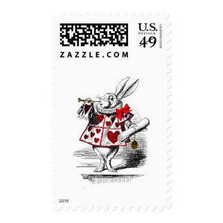 El conejo blanco envio