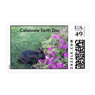 El conejo celebra sellos del Día de la Tierra