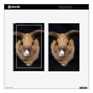 El conejo de conejito de MHRR Honeybadger enciende Skin Para Kindle Fire