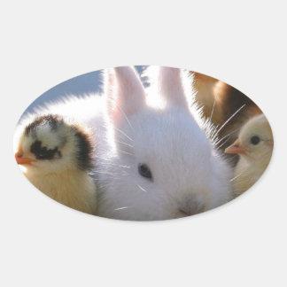 El conejo de la madre adopta algunos polluelos pegatina ovalada