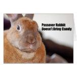 El conejo del Passover dice Tarjeta De Felicitación
