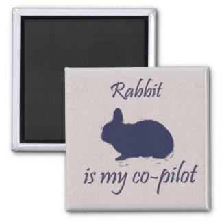 """El """"conejo es imán de mi copiloto"""" (el cuadrado)"""