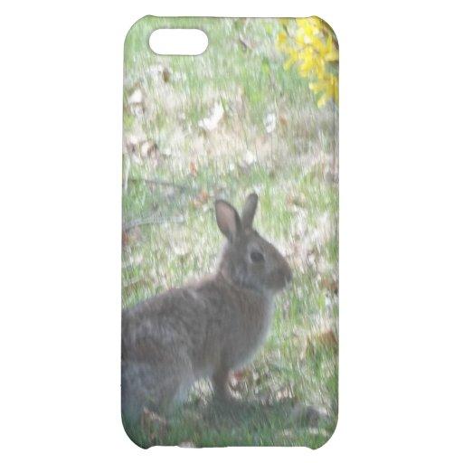 El conejo feliz