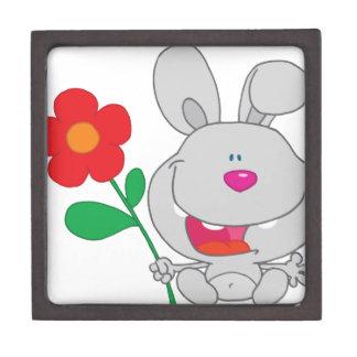 El conejo feliz celebra la sonrisa de la flor cajas de recuerdo de calidad