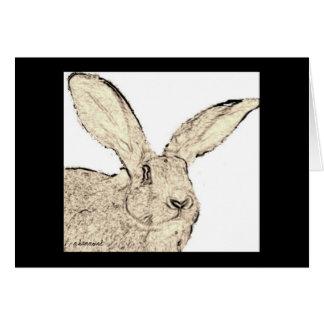 El conejo gigante flamenco hace frente a la tarjeta pequeña