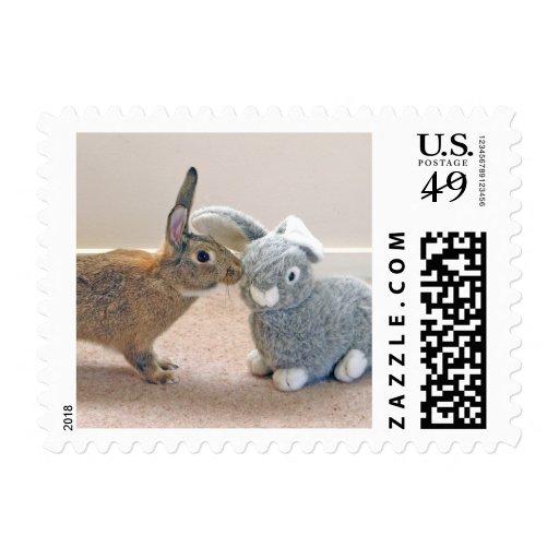 El conejo real sello