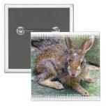 El conejo representa el Pin cuadrado
