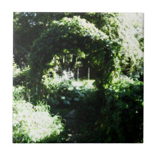 El conjunto de la naturaleza del ~ del jardín tejas