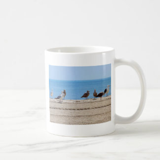 El convenio taza de café