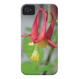 El corazón de Gretchen Funda Para iPhone 4 De Case-Mate