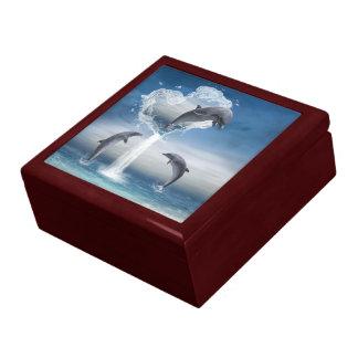 El corazón de la caja de regalo de los delfínes