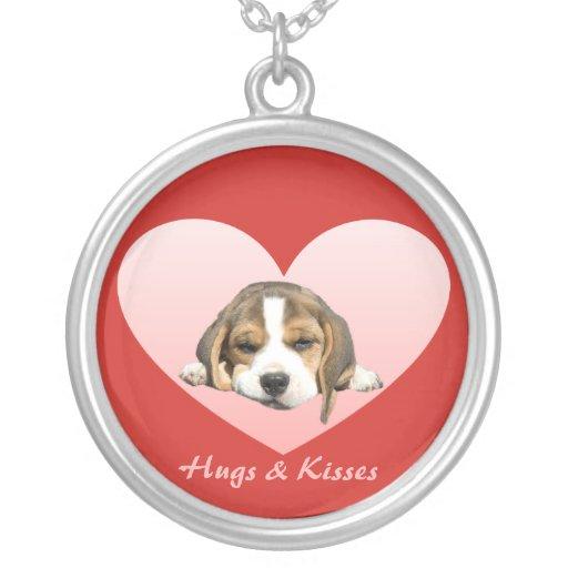 El corazón del beagle abraza y besa el collar
