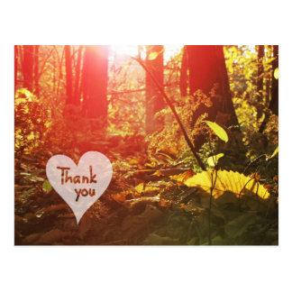 El corazón del bosque de la sol del otoño le postal