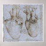 El corazón humano, Leonardo da Vinci Poster