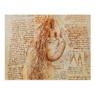 El corazón y el pergamino de las arterias bronquia tarjetas postales