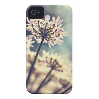 El cordón de la reina Annes florece la caja del iPhone 4 Protectores
