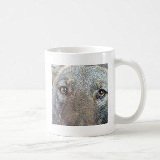 El coyote taza clásica