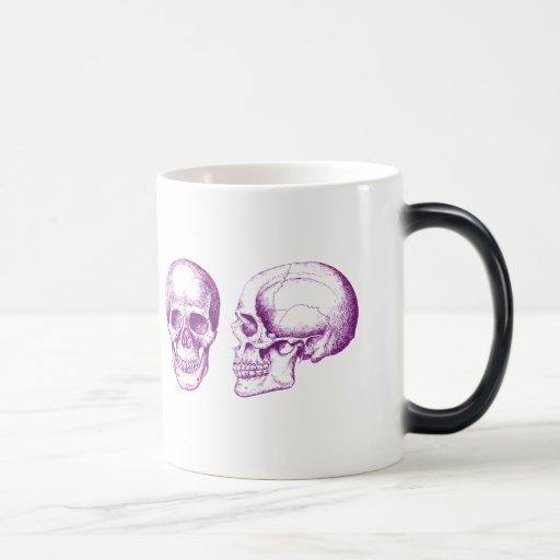 El cráneo humano tazas de café