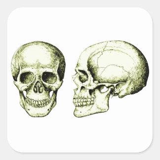 El cráneo pegatina cuadrada