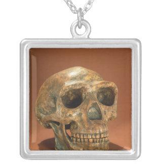 El cráneo reconstruido del hombre de Pekín Collar Plateado