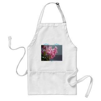 El Crape-mirto rosado florece la floración en DA s Delantal