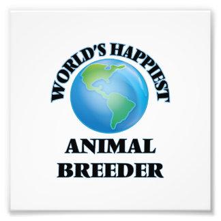 El criador animal más feliz del mundo cojinete