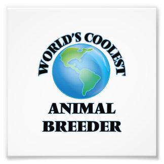 el criador animal MÁS FRESCO de los mundos Foto