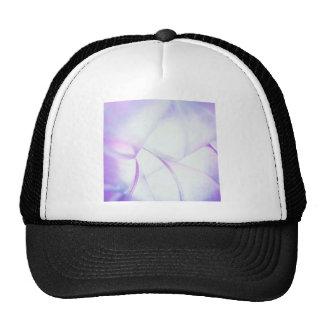 El cristal abstracto refleja choque de la púrpura gorras de camionero