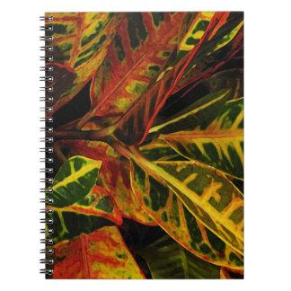 El Croton sale del extracto Libros De Apuntes Con Espiral