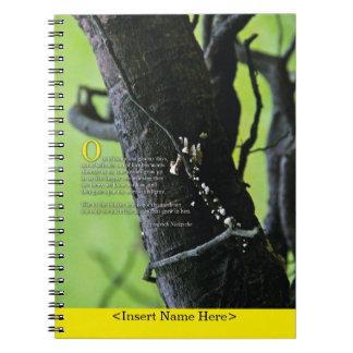 El cuaderno del escritor: Las conclusiones tienen