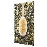 El cuerpo friega el cepillo en rocas lona envuelta para galerias